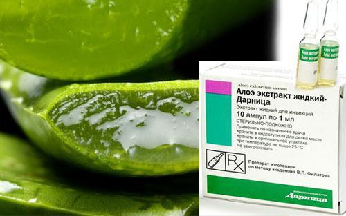 Жидкий экстракт алоэ для лица. Полезные свойства и применение алоэ в ампулах