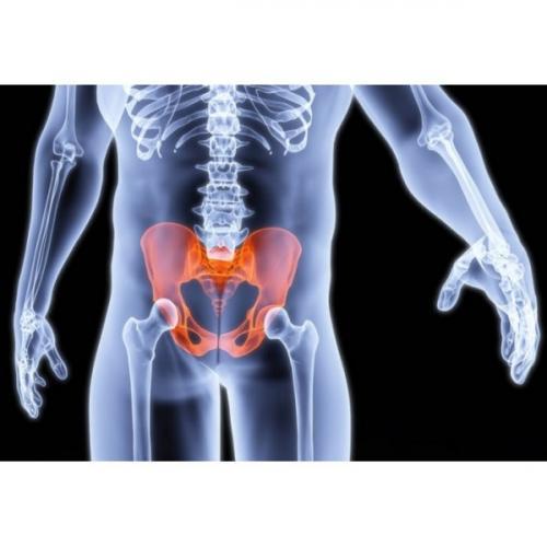 Как увеличить приток крови к малому тазу у мужчин. Улучшение кровообращения в малом тазу