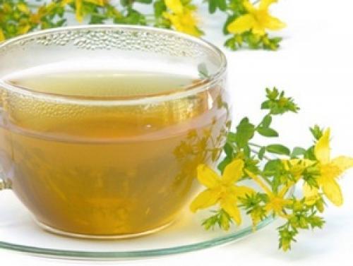 Мелисса мята чай. Польза чая с мелиссой