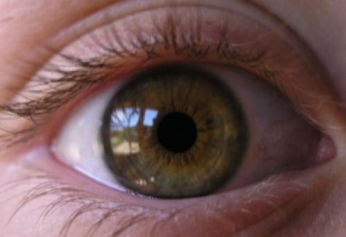 Уход за кожей вокруг глаз посл.  Как правильно ухаживать за кожей вокруг глаз после 30 лет