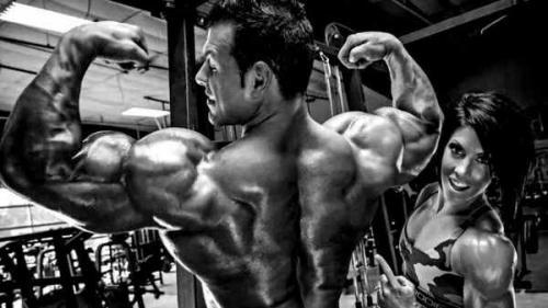 Какие мышцы лучше тренировать вместе и по, каким дням. Какие мышцы надо качать вместе