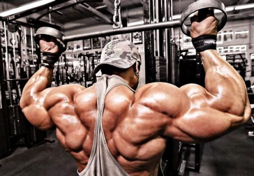 Какие мышцы нельзя качать вместе. Какие мышцы качать в один тренировочный день: ценные рекомендации