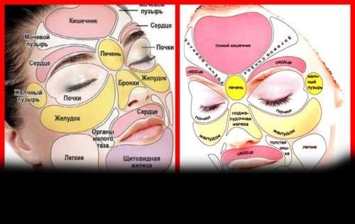 Какой орган влияет на кожу лица. Диагностирование болезней по лицу человека