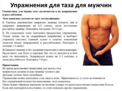 Упражнение для малого таза для мужчин. Система тренировок для укрепления мышц малого таза