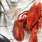 Как правильно готовить морепродукты.