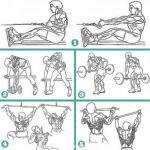 Топ 5 упражнений для мышц спины.