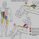 Убойная прокачка пресса: упражнения анатомия!