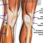 Как укреплять суставы и связки.
