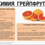 Познавательная инфографика о химическом составе некоторых продуктов.
